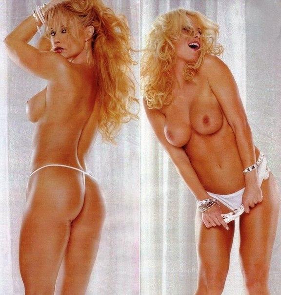 torrie-wilson-porn-pics-volleyball-girls-brazil-naked
